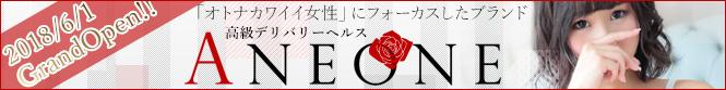 新宿発のデリヘル・風俗『ANEONE~アネワン~』